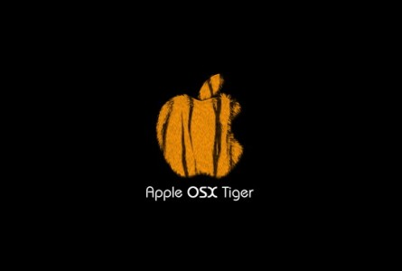 "Tiger – More ""Oh"" than ""Wow"""